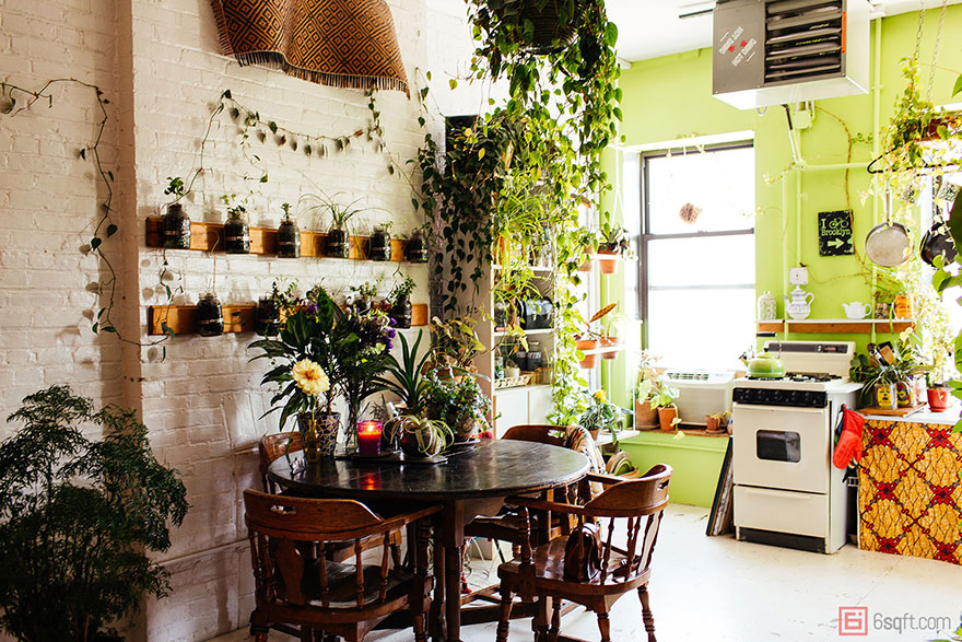 jungle-apartment-plants-summer-rayne-oakes-6
