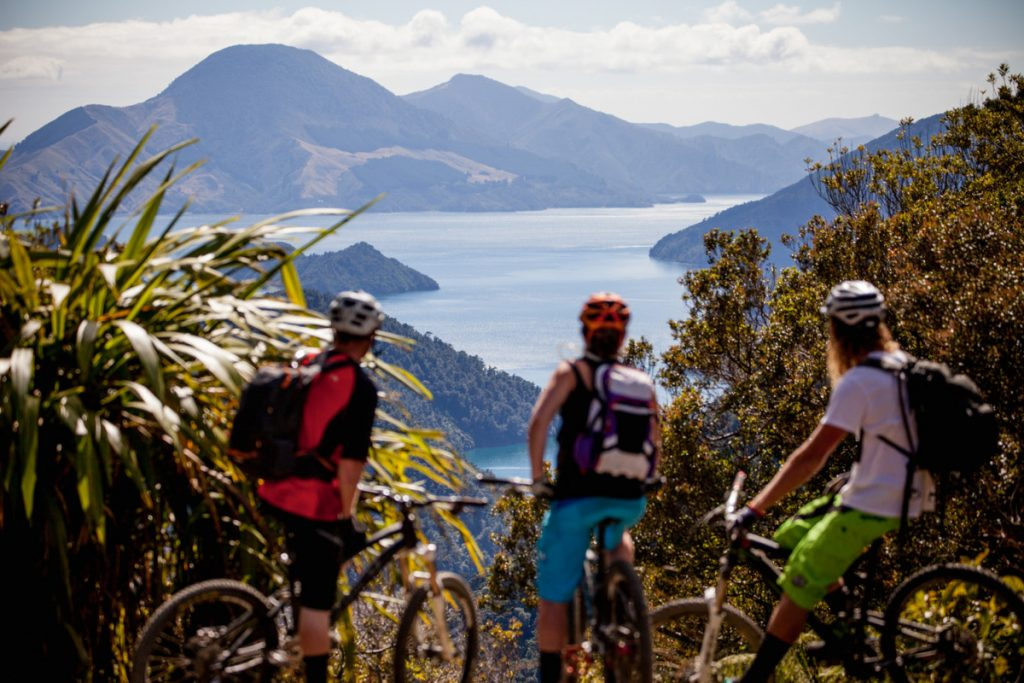 new-zealand-mtb-south-mountain-bike-6